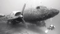 Dünyanın en prestijli sualtı fotoğrafçılarının yarıştığı şampiyonaya Türkiye'den katılan 4 fotoğrafçı büyük başarılar elde etti. www.underwaterphotography.com tarafından düzenlenen yarışmaya diğer ülkelerden katılanların büyük çoğunluğunun mesleği sualtı fotoğrafçılığı olmasına rağmen bu...
