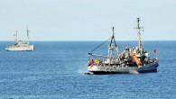 Deniz Kuvvetleri Komutanlığı yetkililerinden alınan bilgiye göre, kurtarma çalışmalarını yürüten Akın gemisi ve destek veren Işın gemisi, ROW adı verilen sualtı robotu aracılığıyla enkazın bulunduğu 125 metre derinlikte çalışmaları yürütüyor....