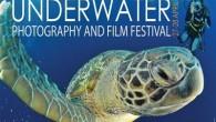 Doğu Akdeniz Üniversitesi (DAÜ) 8. Sualtı Film Festivali 27 Nisan 2012 Cuma günü başlıyor. Dünyanın 12 ülkesinden 15 sualtı filmi ve belgeseli saat 13:00'ten itibaren DAÜ Kütüphanesi Oditoryumu'nda izleyiciyle buluşacak....