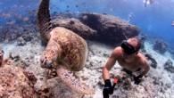 ÇANAKKALE'nin gururu milli sporcu Devrim Cenk Ulusoy, serbest dalış branşında 87, paletsiz, ip destekli serbest dalış branşında ise 81 metreye dalarak kırdığı dünya rekorlarına, Çıldır Gölü'nde, buzun altında bir yenisini...