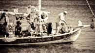"""TIKLAYIN ! """"IRME Fragman"""" """"DOĞA REHBERI"""" Yönetmen Görüşü IRME binlerce yıllık denizcilik geleneğine bir saygı, Bodrum'un günümüzde evirildiği betonlasma ve Turkbuku aklına bir isyandır! Bodrum antik dönemlerden beri gelmiş bir..."""