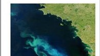 - – - – - – download – - – - – - Nowadays, there is growing concern about the state of the world's oceans. The growth of human populations...