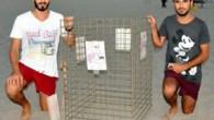 Patara Plajı'ndaki caretta caretta yuvaları özel bir ekip tarafından korunuyor. Gündüz insanlar, gece ise caretta carettaların kullandığı plajda 195 yuva tespit edilirken, kısa zamanda yuvadan çıkacak yavrular denizle kucaklaşacak. Antalya...