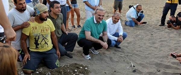 """Vali Karaoğlu, OHAL Valisi olduğunu hatırlatarak, Caretta Carettalar için OHAL koruması ilan etti Antalya Valisi Münir Karaoğlu, OHAL yetkilerini Caretta Carettalar için de kullanacağını belirtti. """"Caretta Carettaların da valisiyim"""" diyen..."""