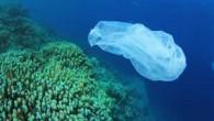 Nature Ecology and Evolution isimli bir dergide yayınlanan rapora göre çöpler okyanusların en derin noktası olan Mariana Çukuru'nda dahi birikiyor. Bütün bunların üstüne Alfred Wegener Enstitüsü (AWI), Helmholtz Kutuplar ve...