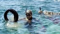Bodrum Belediyesi'nin 'Denize en çok mavi yakışır' sloganıyla gerçekleştirdiği deniz dibi temizlik kampanyası kapsamında Bardakçı sahilinde etkinlik düzenlendi. Bodrum Belediyesi tarafından çevrenin ve denizlerin temiz tutulmasına dikkat çekmek amacıyla yürütülen...