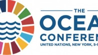 "The question before delegates from the United Nations member states was this: Can we create a sustainable future for our oceans? The answer was a resounding ""yes,"" amidst reports of..."