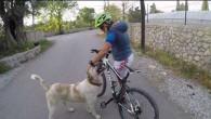 Dağ Bisikleti ile Bitez Arka Sokakları