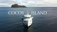 Cocos Island is an island protected as a national park more than 300 nautical miles from the Pacific Coast of Costa Rica. This isolation and protection is the perfect recipe...