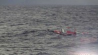 At around 21:00 UTC the Transat Jacques Vabre race office received a call from Christopher Pratt, co-skipper of the Multi50, Drekan Group, to inform them that they had just capsized...
