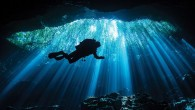 Photographers use many tools to ­create engaging images — one of the most important is the use of fellow scuba divers. Divers are dynamic in their ability to add interest...