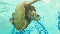 Dünya Doğayı Koruma Vakfı raporunda Akdeniz'in plastik kirliliği seviyesi en yüksek denizlerden biri olduğu belirtilerek bu atıkların başlıca kaynağının günde 144 ton ile Türkiye olduğu kaydedildi. Dünya Doğayı Koruma Vakfı...