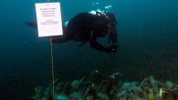 The Peristera shipwreck—located near the Greek island of Alonissos—is one of the first wrecks in Greece that will open to the public, including recreational and professional scuba divers. The wreck...