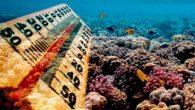 """Bilim insanları, okyanuslarda bulunan metanı bikarbonata dönüştürerek atmosfere yayılmasını engelleyen """"metan yiyen mikropların"""", dünyanın daha sıcak olmasının önüne geçtiğini savunuyor. United Press International'ın (UPI) haberine göre, Harvard Üniversitesinden bir grup araştırmacı, okyanus tabanında jeolojik olarak birbirinden farklı yedi gaz sızıntısını […]"""