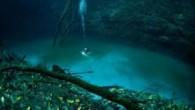 Bu inanılmaz görüntüler profesyonel dalgıç Anatoly Beloshchin tarafından çekildi. Usta dalgıç, Meksika sularının derinlerinde yer alan Cenote Angelita mağarasında yaptığı keşif dalışında bu inalımaz görüntüleri elde etti. Denizin ortalama 60 metre derinliğinde akan bu nehir gerçekten görenleri hayrete düşürüyor. 'Doğa […]