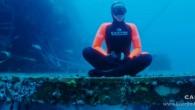 """Yasemin Dalkılıç Yaşayan Efsane Sylvia Earle'ün Konuğu Oldu. 'Enerjini Doğru Kullan' sloganıyla yola çıkan dünya serbest dalış rekortmeni Yasemin Dalkılıç 'DÜNYANIN İNANILMAZ DALIŞLARI' projesiyle günümüzün Cousteau'su dünyanın en ünlü sualtı araştırmacısı Sylvia Earle'ün dikkatini çekti. Time dergisi tarafından """"Gezegenin Kahramanı"""" […]"""
