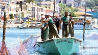 40 yıl öncesine kadarİstanbul'da 55 tane olan dalyandan şimdilerdesadece3 tane kaldı. Mesleğin yok olmasından korkuluyor. Her geçen yıl balık türlerinin ve miktarının azalması, modern avlanma teknolojileri ve çalışacak personel bulunamaması...