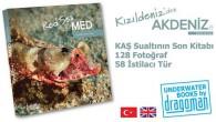 """Sevgili deniz dostları: Akdeniz'deki göçmen canlıları deniz biyolojisi meraklısı bir sualtı fotoğrafçısının gözünden sunan yeni kitabım yayınlandı! """"Kızıldeniz'den Akdeniz'e"""" ve """"Red Sea in the Med"""" çifte başlıklarıyla yayınlanan bu kitapta sizlere, Süveyş kanalından girerek Akdeniz'i istila eden, Kaş bölgesinde 2000-2015 […]"""