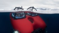 The images below are the first of creatures found in a previously unexplored region of the Antarctic seabed offering a fascinating glimpse of life in one of the most remote...