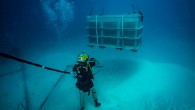 FORT SHAFTER, Hawaii — A joint underwater recovery team of soldiers, sailors, airmen and civilians recently completed an intense two-month excavation of sunken World War II airplanes in Palau, retrieving...