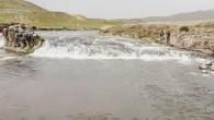 Van Gölü'nde yaşayan tek balık türü olan ve üreme dönemi olduğu için avlanılması yasaklanan inci kefalinin tatlı sulara göçü başladı. Üreme döneminde suyun akışının tersine yüzerek tatlı sulara göç eden inci kefalinin yolculuğu görsel bir şölen sunuyor. Balıklar, yaklaşık 23 […]