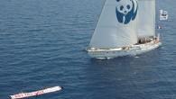 """WWF'in Blue Panda yelkenlisi, """"daha iyi korunan bir Akdeniz"""" fikrinden hareketle çıktığı yolda Türkiye'ye ulaştı. Dünya Doğayı Koruma Vakfı'nın (WWF), Akdeniz'deki plastik kirliliğine dikkati çeken ve """"daha iyi korunan bir..."""