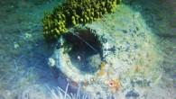Edirne'nin Keşan ilçesinde sahilden 25 metre açıkta deniz içerisinde bir adet MK-3 eski İngiliz harp mayını tespit edildi. Tespit edilen mayın SAS Timi tarafından imha edildi. Milli Savunma Bakanlığı, Edirne'de...