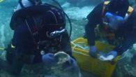 Güney Koreli arkeologların deniz altında buldukları arasında yaklaşık bin yıl öncesinden kalma altın sikkeler var. Hazinenin Kuzey Song Hanedanlığı'na ait olduğu düşünülüyor. Güney Koreli arkeologlar, deniz altında, yaklaşık 900 yıl önce Çinli ticaret gemileri için kullanılan bir rampayla birlikte eski […]